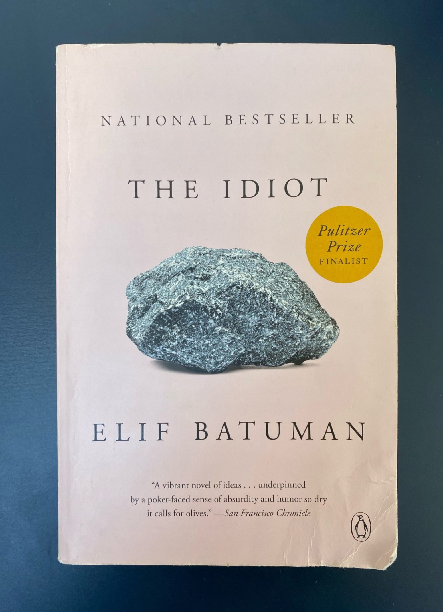 I Want you to Read The Idiot